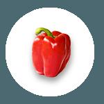 visu-avis-cooking-for-you3